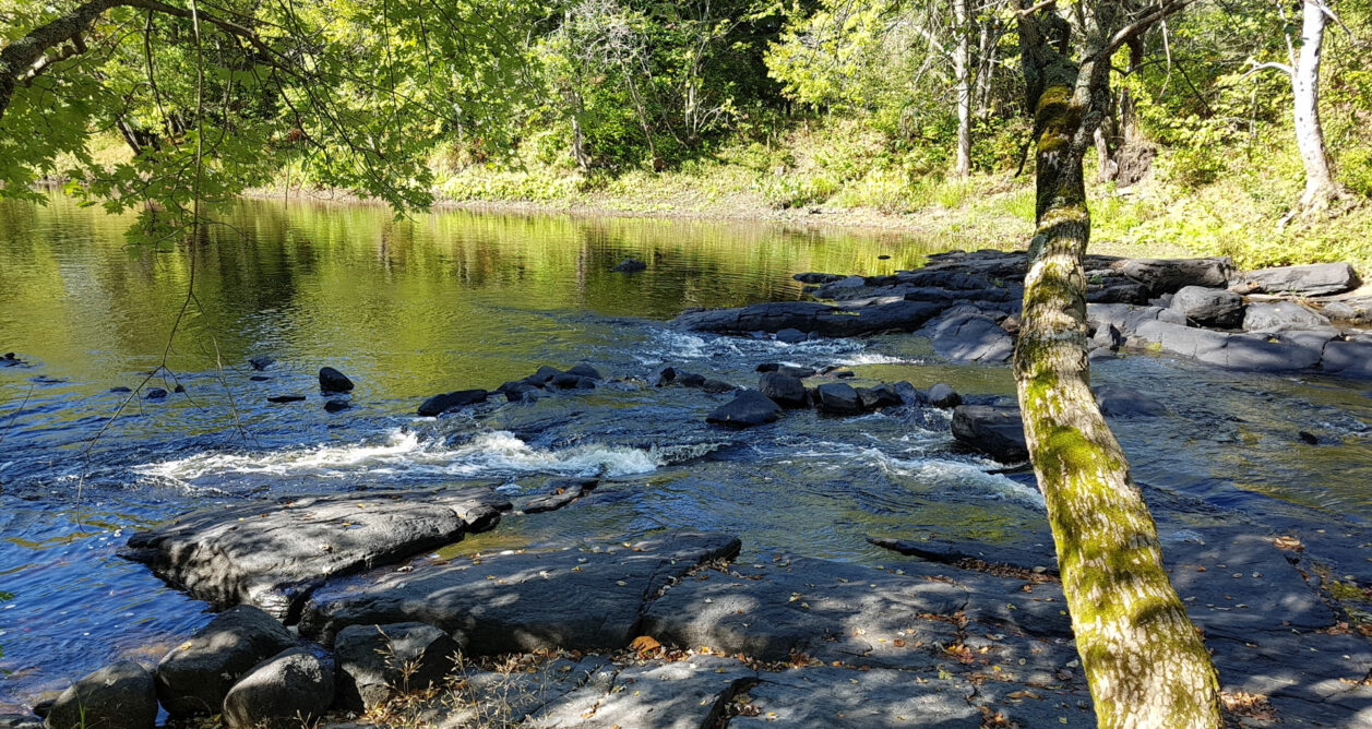 Photo of rapids on a river, Skootamata River